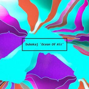 "Dubokaj ""Alpine Dub"" Online Campaign"
